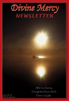 Newsletter Annual Subscription EUR/USA